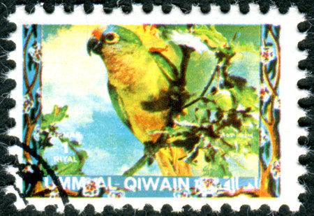 umm: UMM AL-QUWAIN - CIRCA 1972: Postage stamp printed in Umm al-Quwain, show bird Green-yellow Parrot, circa 1972