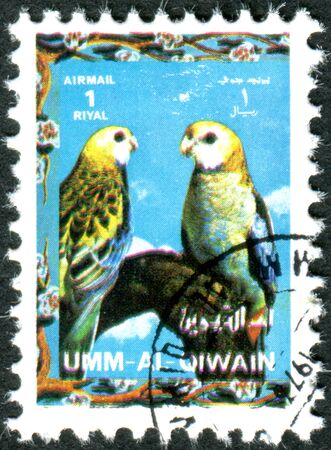 umm: UMM AL-QUWAIN - CIRCA 1972: Postage stamp printed in Umm al-Quwain, show bird Pale-headed Rosella (Platycercus adscitus), circa 1972 Editorial