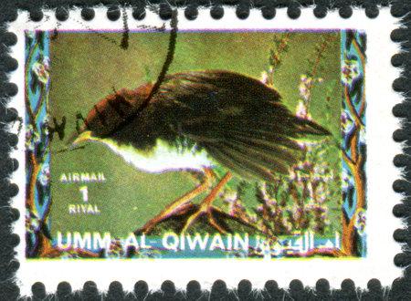 umm: UMM AL-QUWAIN - CIRCA 1972: Postage stamp printed in Umm al-Quwain, show bird Red-and-white Crake (Laterallus leucopyrrhus), circa 1972 Editorial