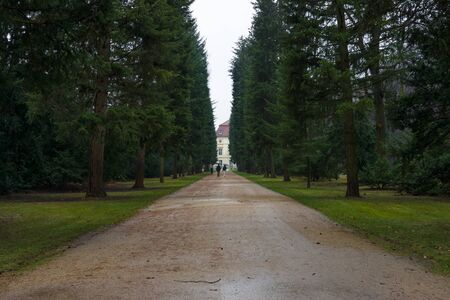 dank: Park alley Charlottenburg Palace in rainy weather. Editorial