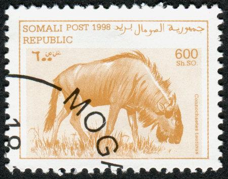 taurinus: SOMALIA - CIRCA 1998: A stamp printed in Somalia, shows the animal Blue wildebeest (Connochaetes taurinus), circa 1998