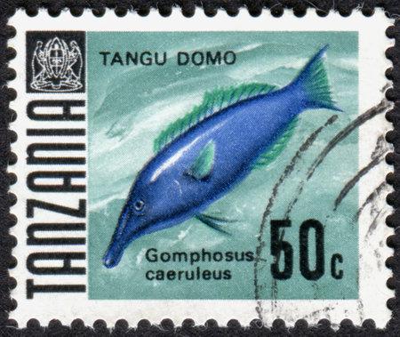 wrasse: TANZANIA - CIRCA 1962: A stamp printed in Tanzania shows a aquarium fish Gomphosus caeruleus, circa 1962