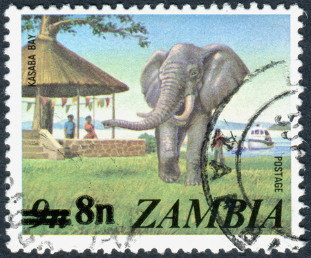 overprint: ZAMBIA - CIRCA 1975: A stamp printed in Zambia (overprint 1979), shows African Elephant (Loxodonta africana), circa 1975 Editorial