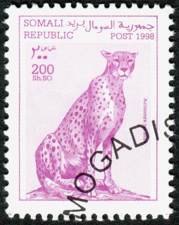 jubatus: SOMALIA - CIRCA 1998: A stamp printed in Somalia, shows the animal Cheetah (Acinonyx jubatus), circa 1998
