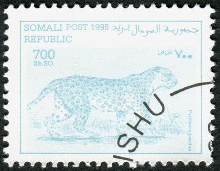 panthera pardus: SOMALIA - CIRCA 1998: A stamp printed in Somalia, shows the animal Leopard (Panthera pardus), circa 1998
