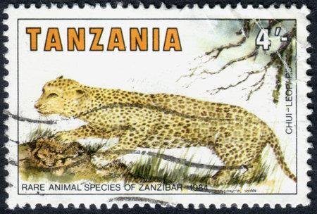 panthera pardus: TANZANIA - CIRCA 1984: A stamp printed in Tanzania, dedicated to Rare Species of Zanzibar, shows a Leopard (Panthera pardus), circa 1984