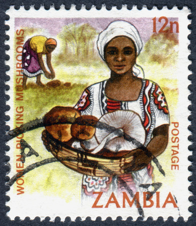 ZAMBIA - CIRCA 1983: A stamp printed in Zambia, is dedicated to Cultural Heritage, shows a Women picking mushrooms, circa 1983