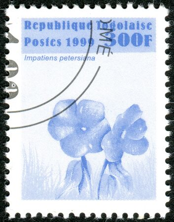 TOGO - CIRCA 1999: A stamp printed in Togo, shows the flower Impatiens petersiana, circa 1999 Editorial