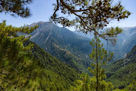 Samaria Gorge. Crete. Greece. Stock Photo