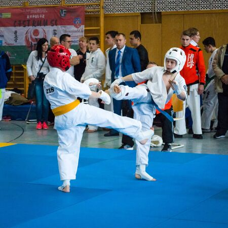 BERLIN - MARCH 18, 2017: Fighters on the mat. European championship Kyokushin World Union (KWU) for Children and Youth. Editorial