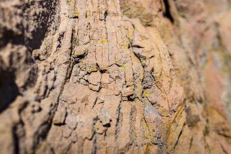 background texture: Sedimentary rock. Structure of natural stone. Background. Shallow depth of field. Focus on the center.