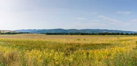Panoramic view of the beveled fields. In the background there are hills. Stock Photo
