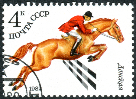 USSR - CIRCA 1982: A stamp printed in USSR, devoted to Horse breeding in the USSR, shows a Russian Don (Equus ferus caballus), circa 1982