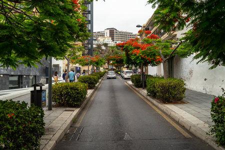 PUERTO DE LA CRUZ, SPAIN - JULY 19, 2018: Streets of a popular tourist town on the island of Tenerife, Canary Islands.