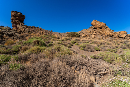 The lava fields of Las Canadas caldera of Teide volcano and rock formations - Roques de Garcia. Tenerife. Canary Islands. Spain.
