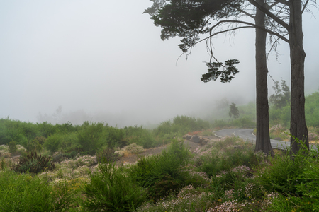 Natural landscape and the highway in the fog extending into the distance. Stock Photo