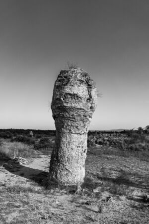 Pobiti Kamani (planted stones), also known as The Stone Desert, is a desert-like rock phenomenon located on the north west Varna Province of Bulgaria. Black and white.