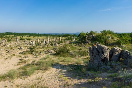Pobiti Kamani (planted stones), also known as The Stone Desert, is a desert-like rock phenomenon located on the north west Varna Province of Bulgaria.