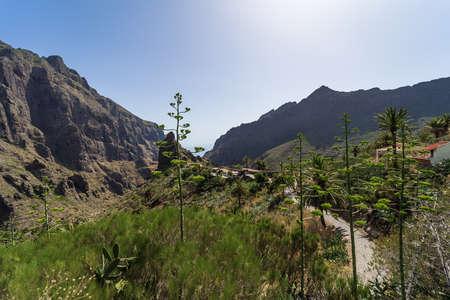 The Macizo de Teno mountains and Masca Gorge. View from the village of Maska. Tenerife. Canary Islands. Spain. Standard-Bild