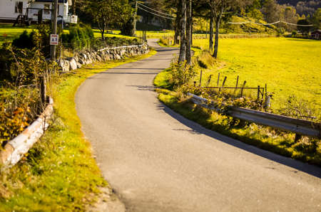 lone road in autumn or fall landscape, norway