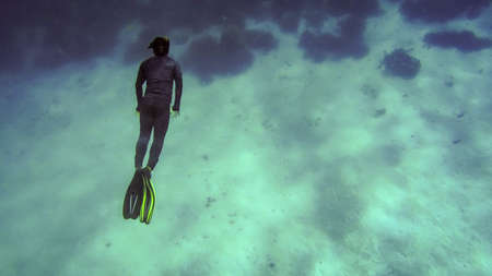 free diver close to coral reef underwater