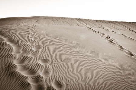 human footsteps in desert dune