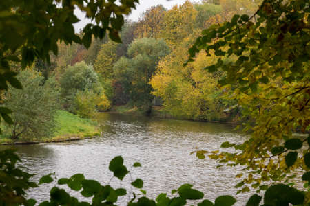 depicts: The photo depicts the landscape of the autumn pond