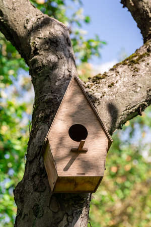 birdhouse hanging on an Apple tree in the Park in the summer