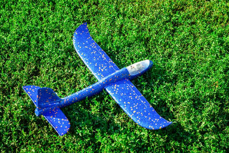 the plane fell into the field, a toy plane on the grass