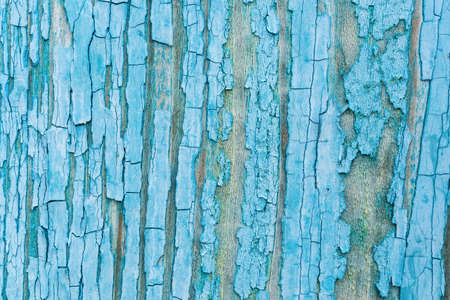 Old grunge wooden fence pattern in navy blue tone. Abstract background and texture for design. Foto de archivo