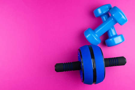Sports kit: dumbbells, roller for press on a pink background, photo banner, top view, space for text.