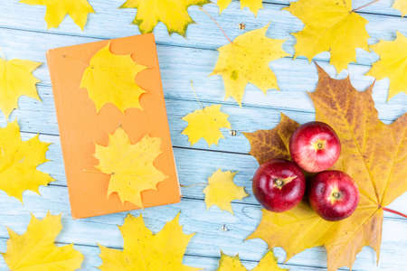 Close-up of three red apples and an old book with maple leaves on a blue wooden background. The concept of the fall harvest. Stock Photo