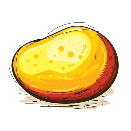 mango fruit vector, isolated image