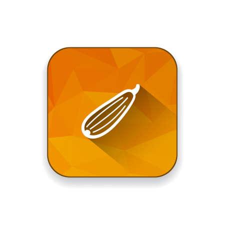 zucchini: Zucchini icon Illustration