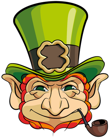 Vector colourful illustration of leprechauns head in top hat, isolated on white background. File doesnt contains gradients, blends, transparency and strokes or other special visual effects. You can open this file with any vector graphics editors.