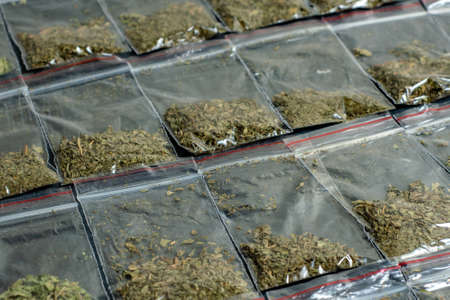 crime evidence: many packaged doses of cannabis lie in rows on a dark surface