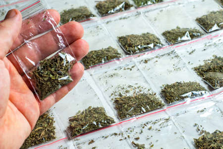 crime evidence: a package with hemp in a person's hand against the background of many packaged doses of cannabis lie in rows on a light surface