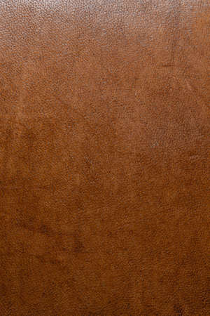 leather grunge background: an old piece of tough camel skin, with scuffs, spots, scars