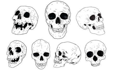 Set Skull Vector Illustration