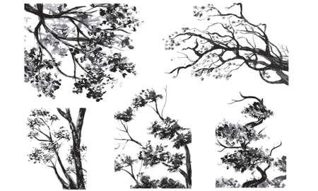 primavera: Alberi acquerello set Illustration