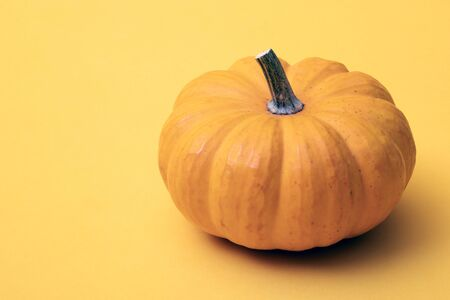 Single fresh orange miniature pumpkin isolated on yellow background Stock Photo