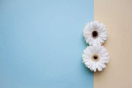 El día internacional de la mujer en marzo de fondo con flores pétalo número. Foto de archivo - 94803450