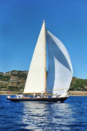 sailing crew: race