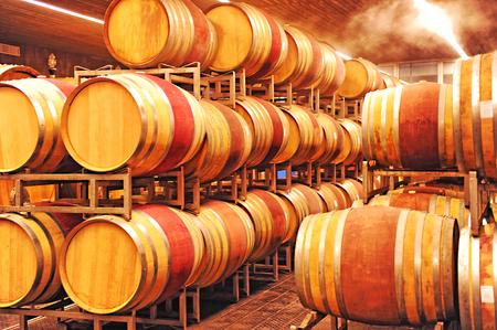 piedmont: Piedmont, wine cellar with wooden barrels