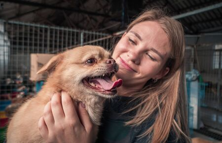 Close-up of female volunteer holds on hands dog in shelter.