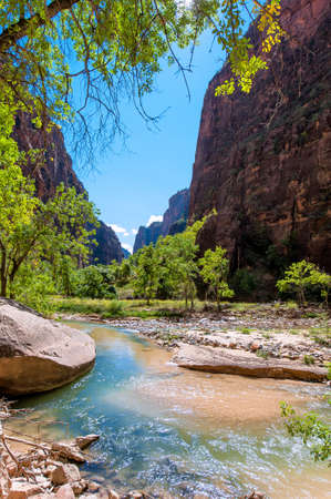 zion: The river of Zion park under the blue sky