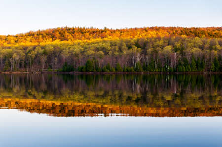 reflection of the trees in the lake at autumn
