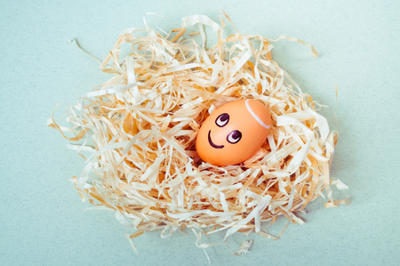 Brown egg with funny angel face in a nest