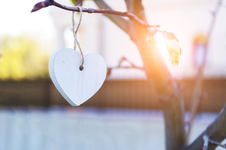 White vintage wooden heart hanging from tree branch. Valentines Day. Blurred background and copy space.
