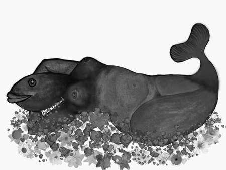 Illustration-Mermaid